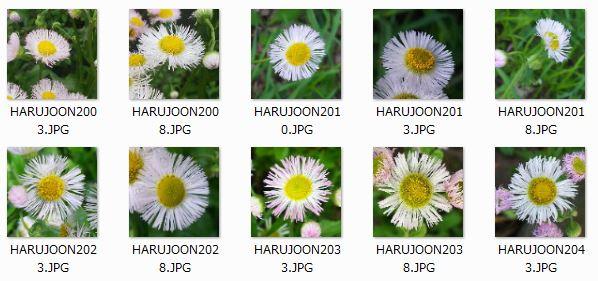 HARUJOON_TEST