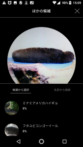 FISH05-1