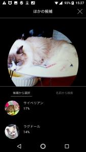 CAT01-1