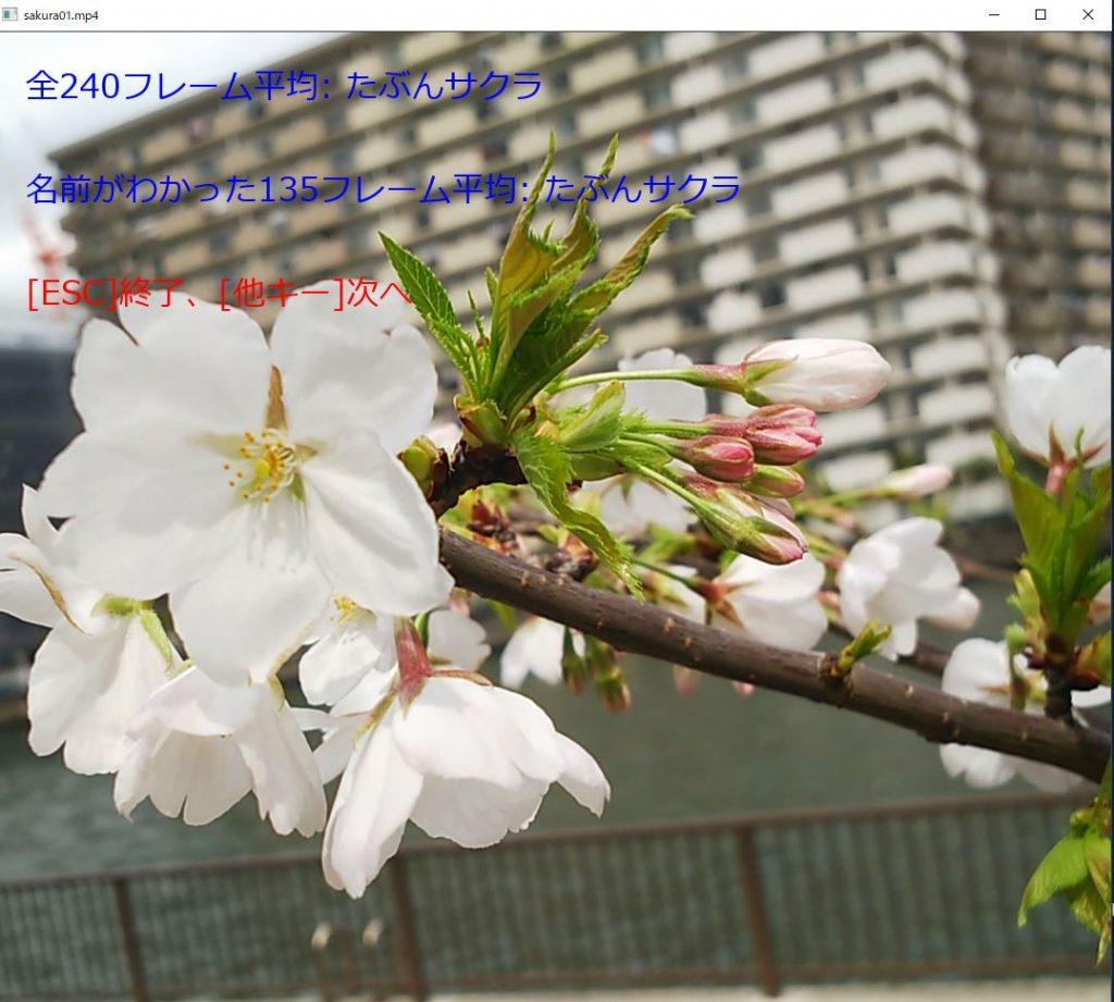 plant05_movie01