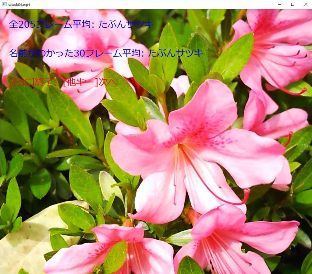 plant05_movie03
