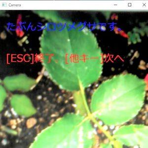 camera_bara_01_error-1